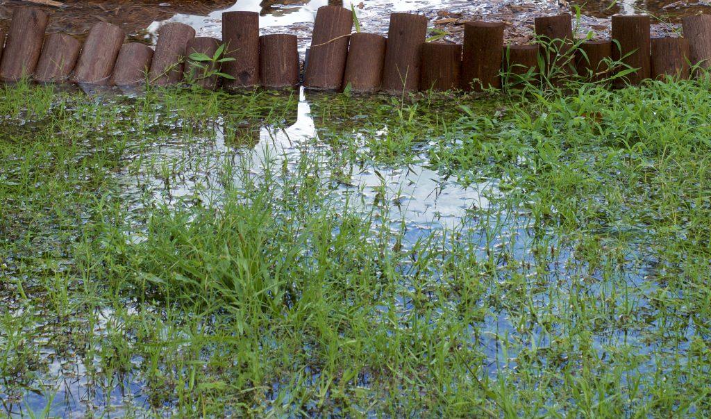 Wet Yards Pittsburgh